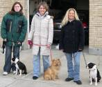 Anthony Jerone's School of Dog Training & Career Inc... Group Training