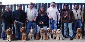 Dog Training Queens, New York, Flushing, Whitestone, Astoria, College Point, Bayside, Kew Gardens, Nassau