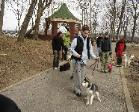 Free Dog Training Lessons at Doggie Boot Camp -  Queens New York