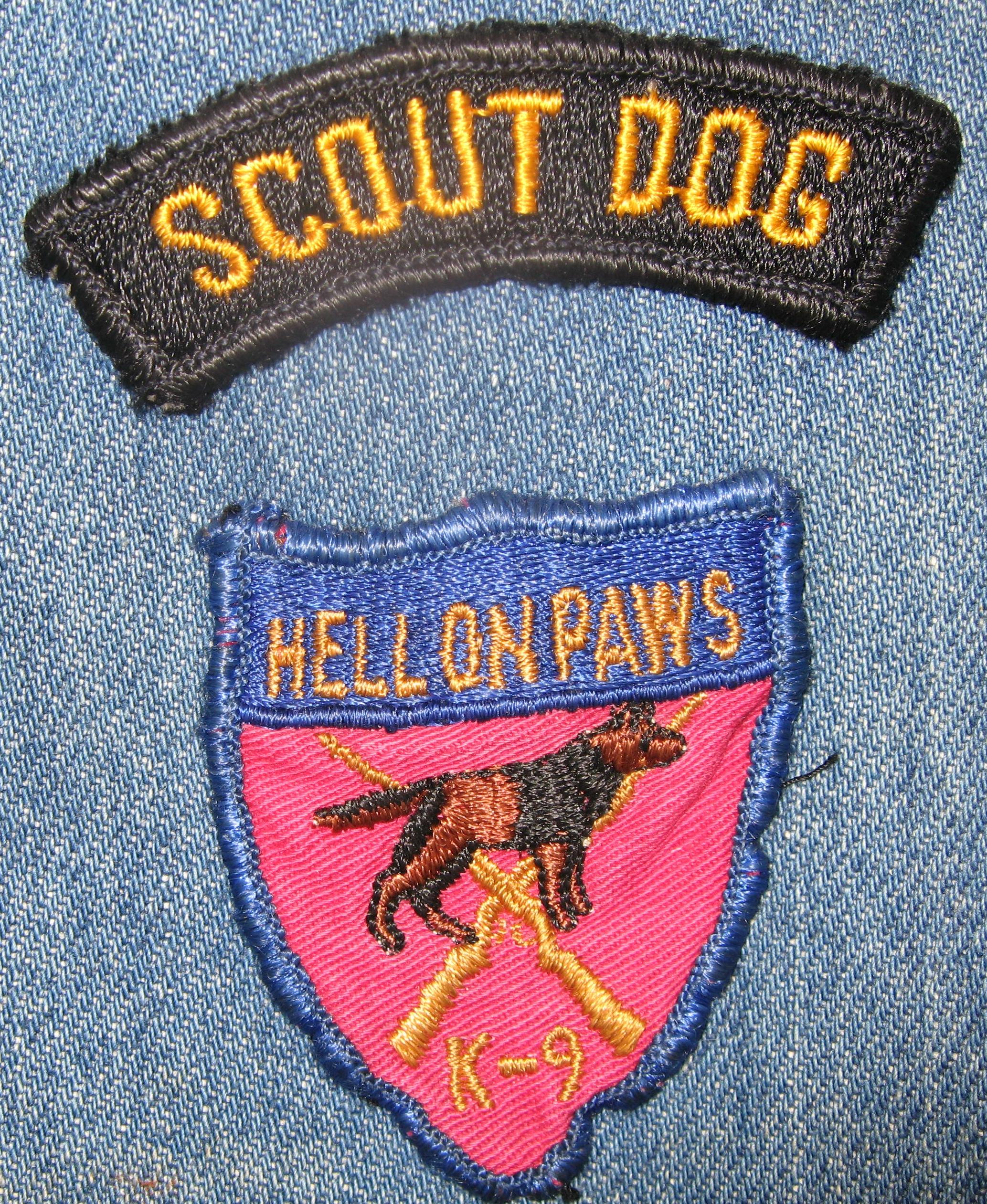 Dog School Nyc Dog Training Certification Program Nyc