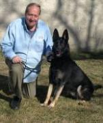 dog school, dog training school, dog career, become a dog trainer,certified dog trainer Queens