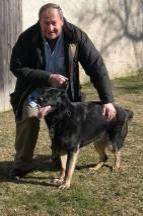 Dog School NY - Become a dog trainer - Queens NY